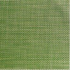 Салфетка сервировочная зеленое яблоко, пвх APS 45*33см, Артикул: 60521, Производитель: APS (Германия)